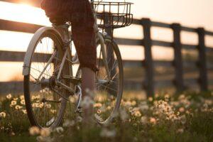 Na co zwrócić uwagę przy zakupie roweru? Wybierz odpowiednie siodełko!